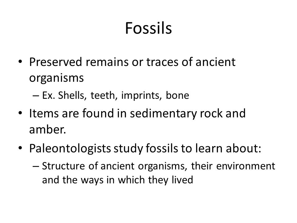 How do we date fossils.