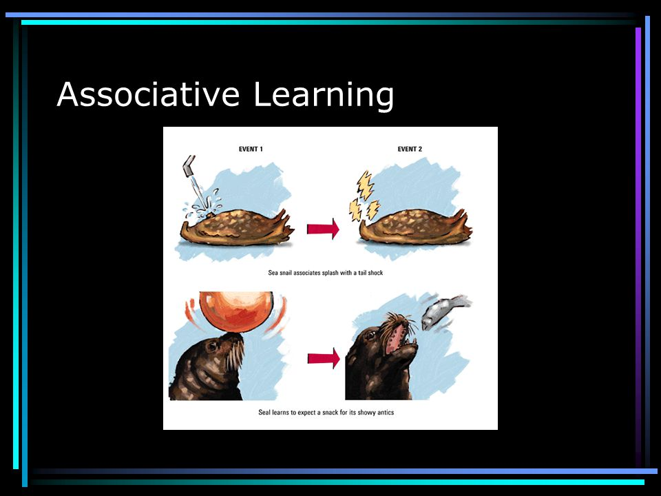 Associative Learning Linking two events that occur close together Someone is shot. First you hear the sound of the shot, then see the blood. You assoc