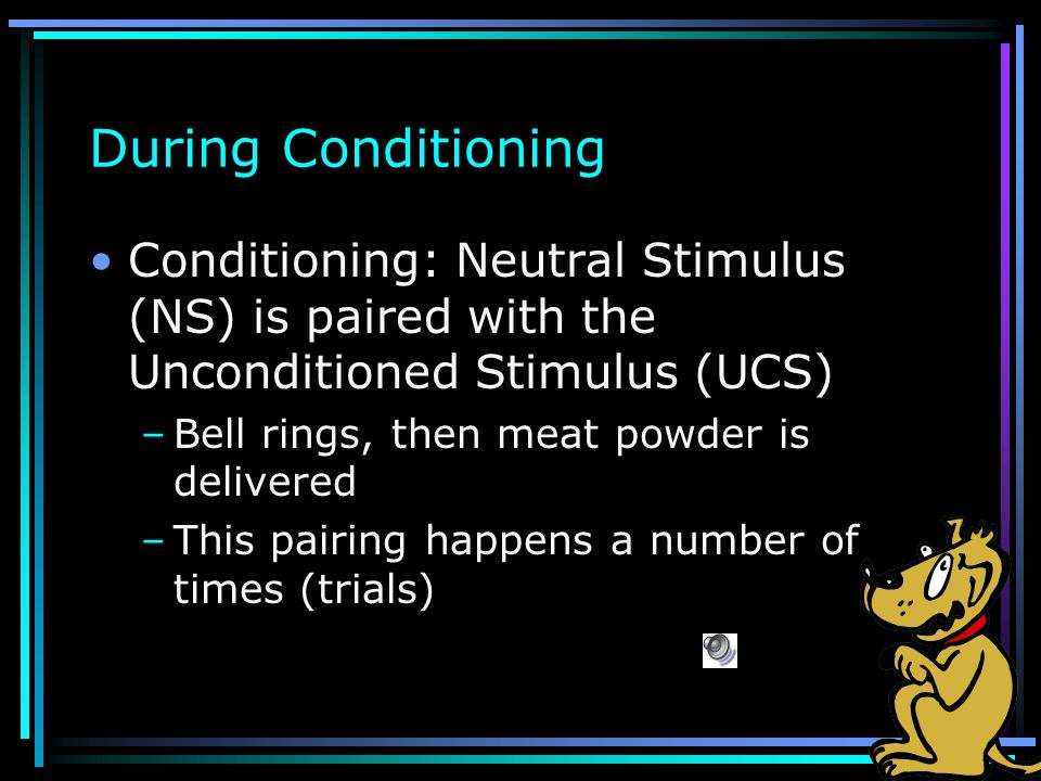 Before Conditioning Before Stimuli Are Paired –Unconditioned Stimulus (UCS) elicits Unconditioned Response (UCR) Meat elicits salivation –Neutral stim
