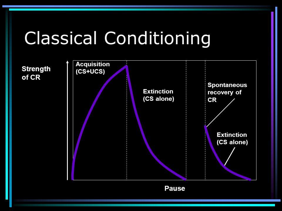 Classical Conditioning UCS (passionate kiss) UCR (sexual arousal) CS (onion breath) CS (onion breath) CR (sexual arousal) UCS (passionate Kiss) UCR (s