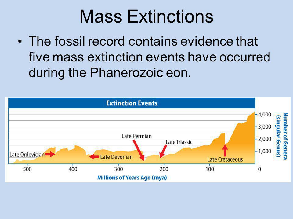 Extinctions Extinction occurs when the last individual organism of a species dies.Extinction A mass extinction occurs when many species become extinct within a few million years or less.