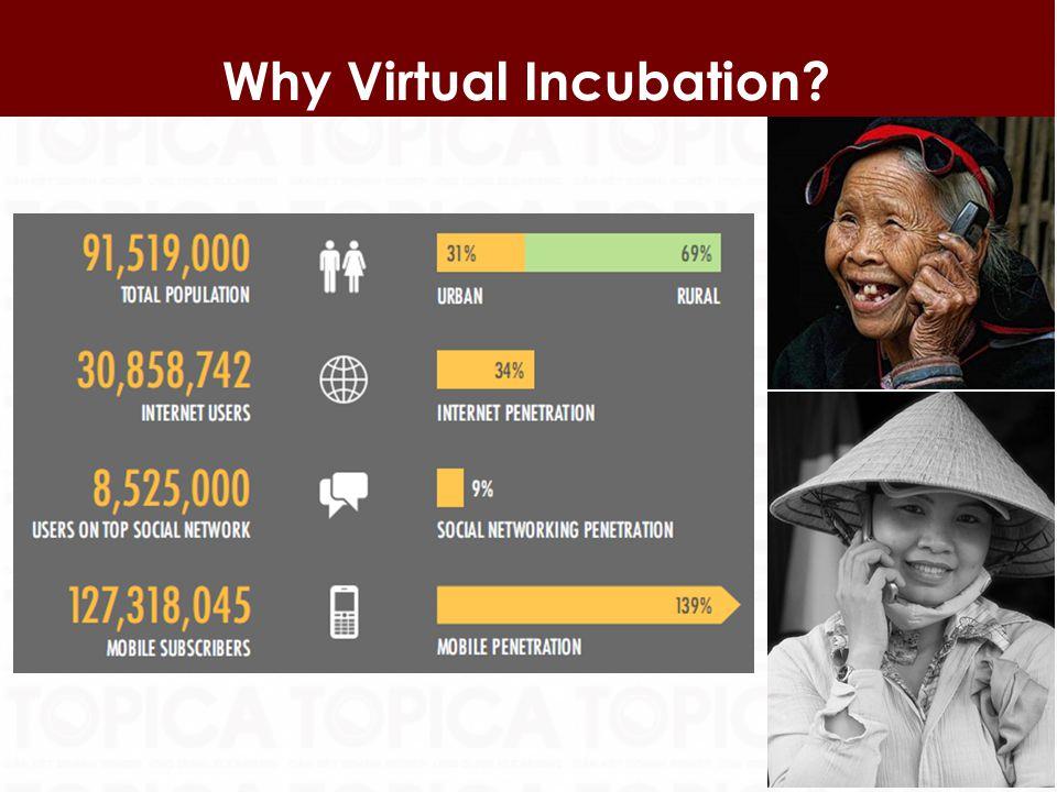 12 Why Virtual Incubation?