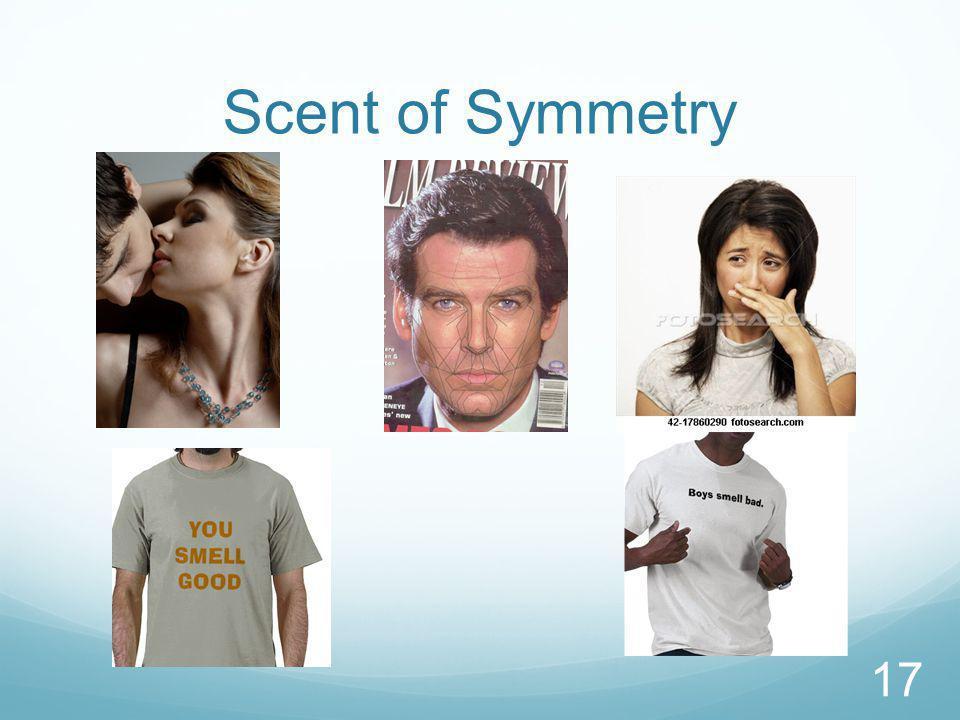 Scent of Symmetry 17