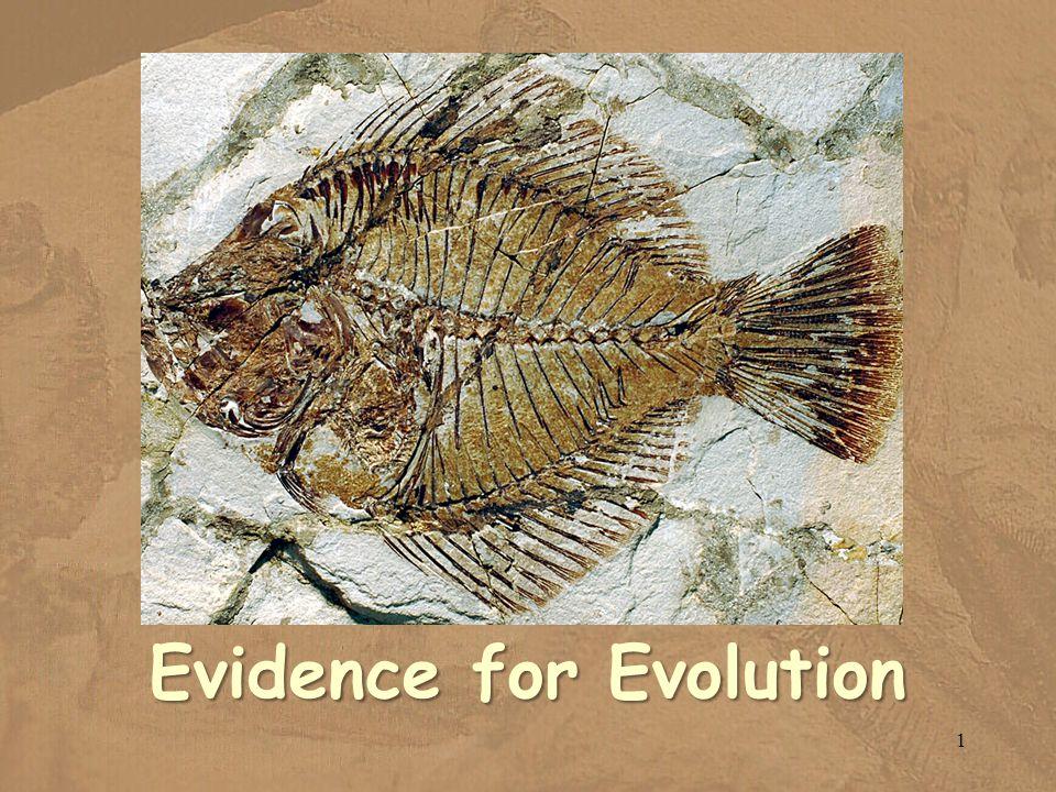 Evidence for Evolution 1