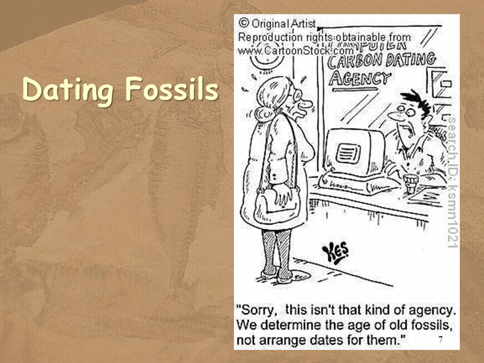 Dating Fossils 7