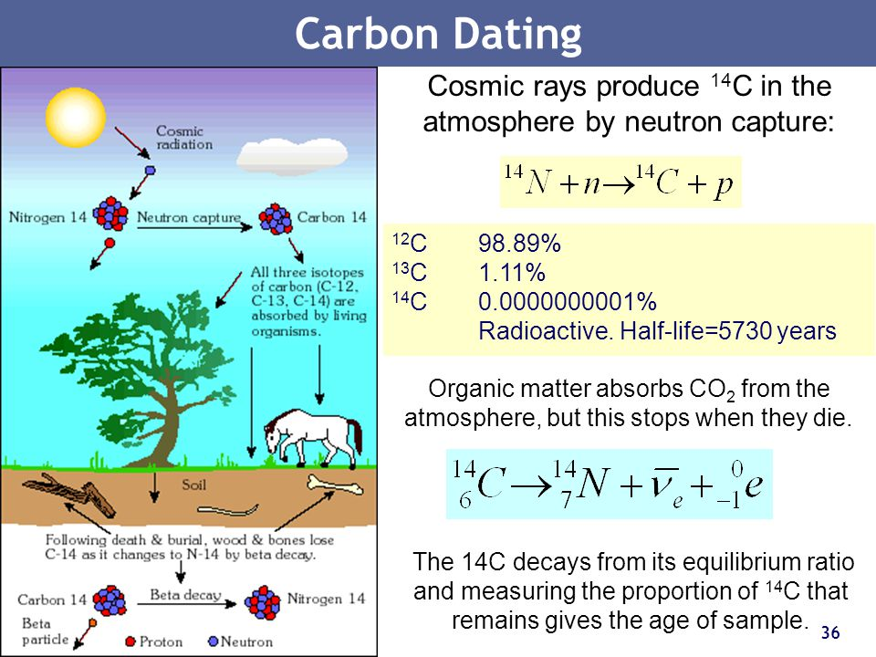 36 Carbon Dating Cosmic rays produce 14 C in the atmosphere by neutron capture: Organic matter absorbs CO 2 from the atmosphere, but this stops when t