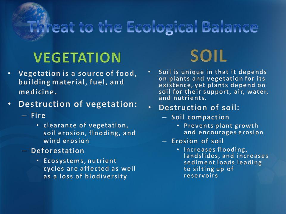 Vegetation is a source of food, building material, fuel, and medicine. Destruction of vegetation: – Fire clearance of vegetation, soil erosion, floodi