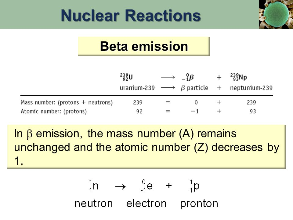 Radioactive Decay Series