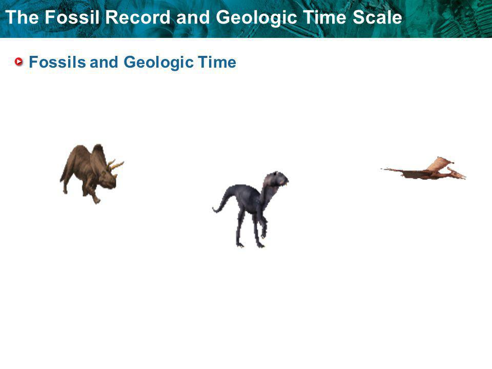 The Fossil Record and Geologic Time Scale Fossils and Geologic Time
