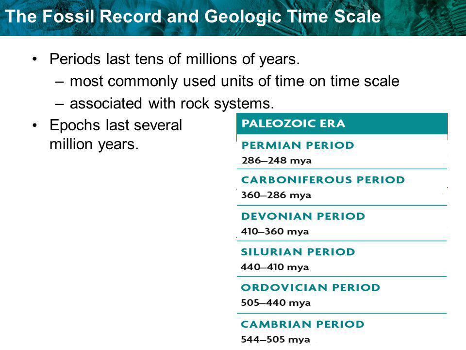 The Fossil Record and Geologic Time Scale Periods last tens of millions of years. –most commonly used units of time on time scale –associated with roc