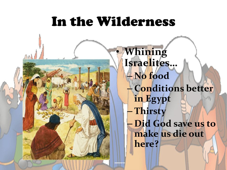 In the Wilderness Whining Israelites… – No food – Conditions better in Egypt – Thirsty – Did God save us to make us die out here?
