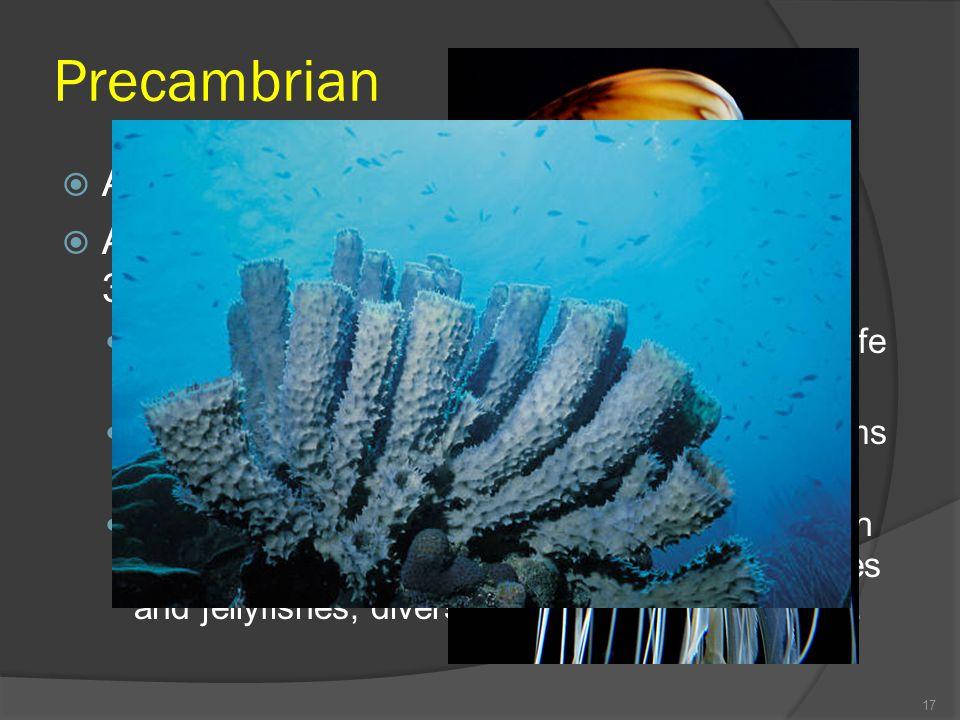 Unicellular Organisms Example Unicellular Organisms
