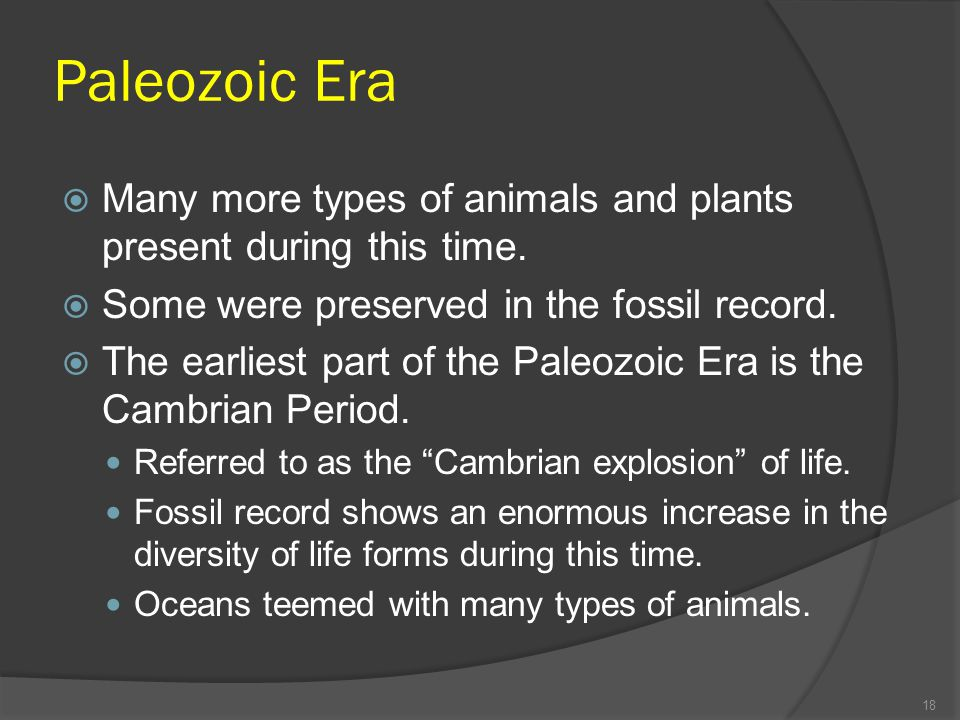 Paleozoic Era Many more types of animals and plants present during this time. Some were preserved in the fossil record. The earliest part of the Paleo