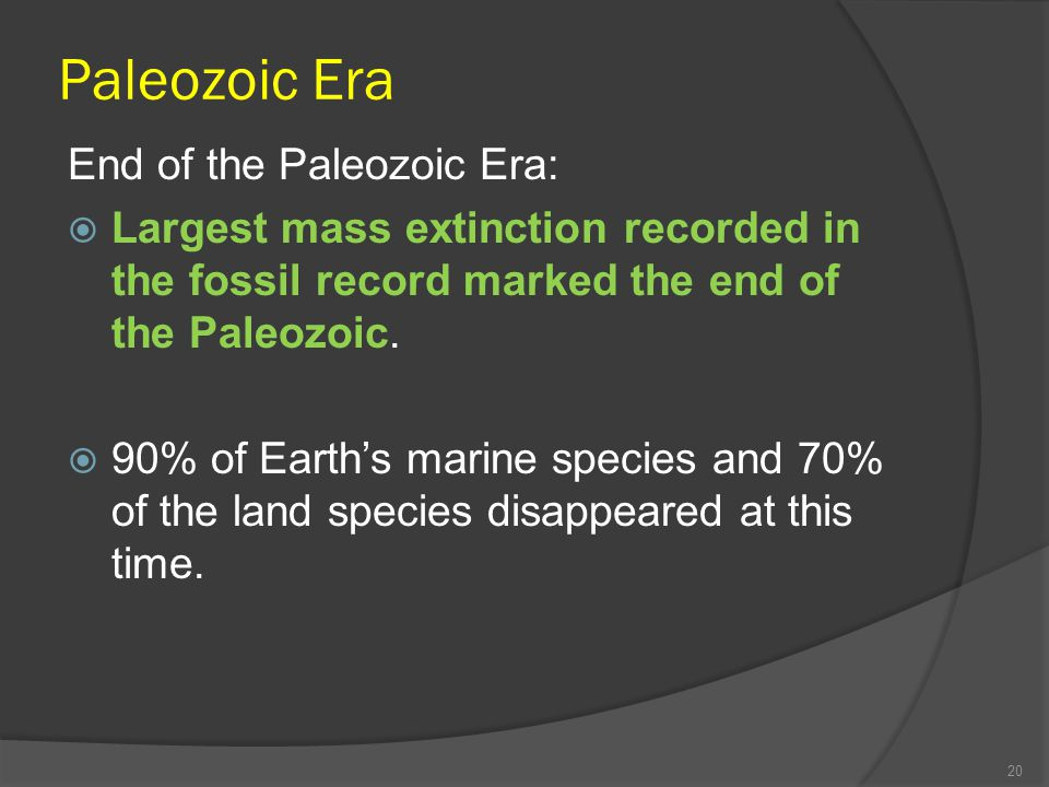 Paleozoic Era End of the Paleozoic Era: Largest mass extinction recorded in the fossil record marked the end of the Paleozoic. 90% of Earths marine sp