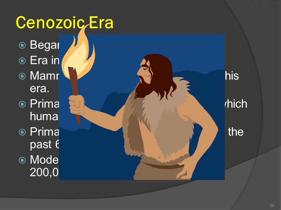 Cenozoic Era Began about 65 million years ago. Era in which we now live. Mammals flourish in the early part of this era. Primates appear – group of an