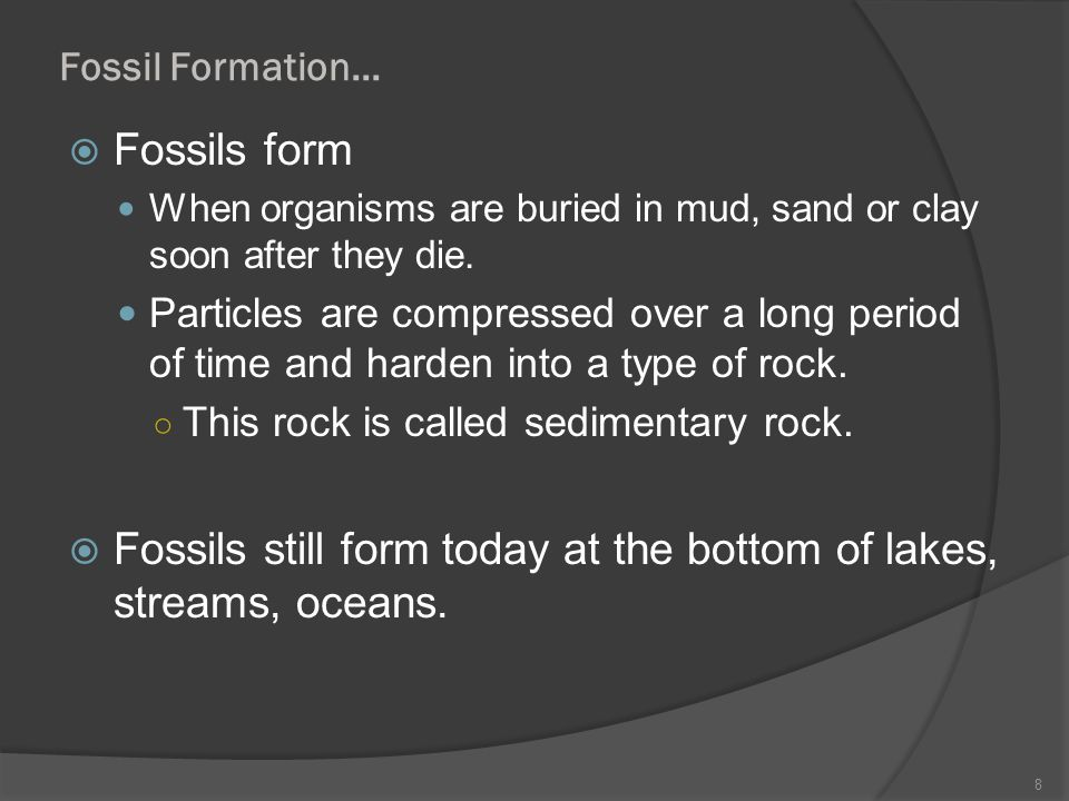 Fossil Formation… Fossils form When organisms are buried in mud, sand or clay soon after they die. Particles are compressed over a long period of time