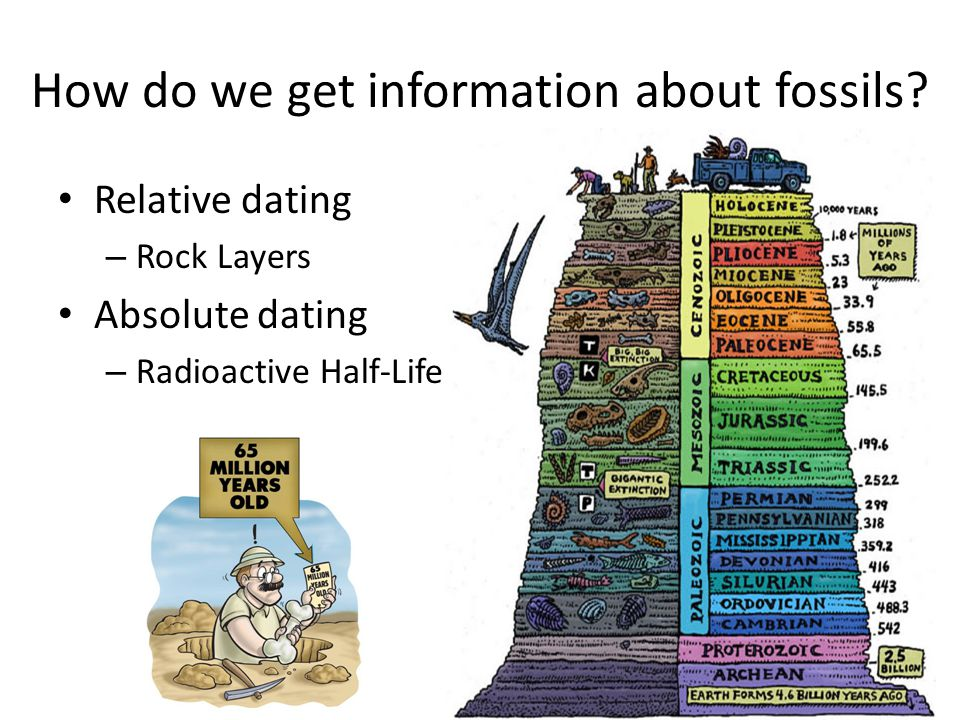 Analogy of methods for hookup rock and fossils used by paleontologists