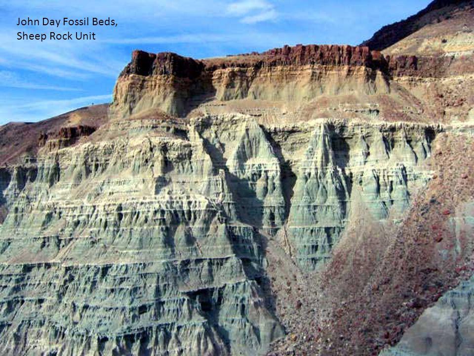 John Day Fossil Beds, Sheep Rock Unit