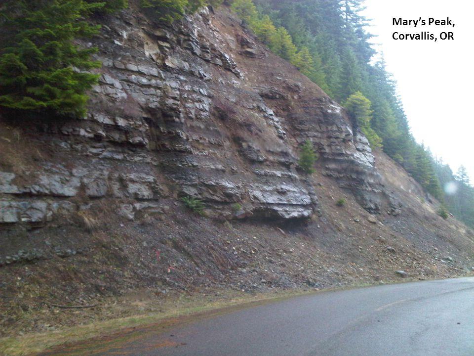 Marys Peak, Corvallis, OR