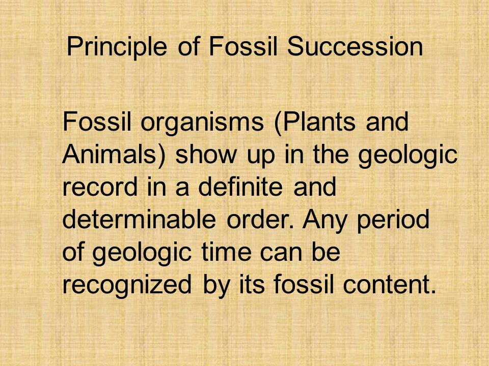 Principle of Fossil Succession Fossil organisms (Plants and Animals) show up in the geologic record in a definite and determinable order.