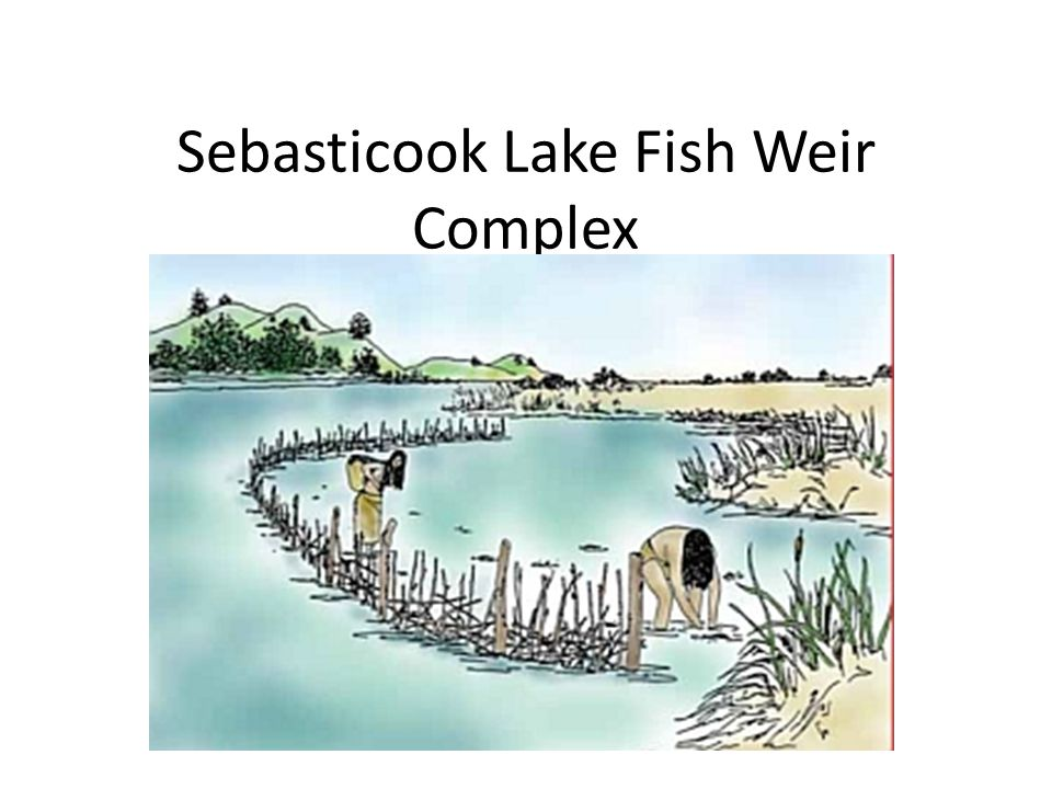 Sebasticook Lake Fish Weir Complex