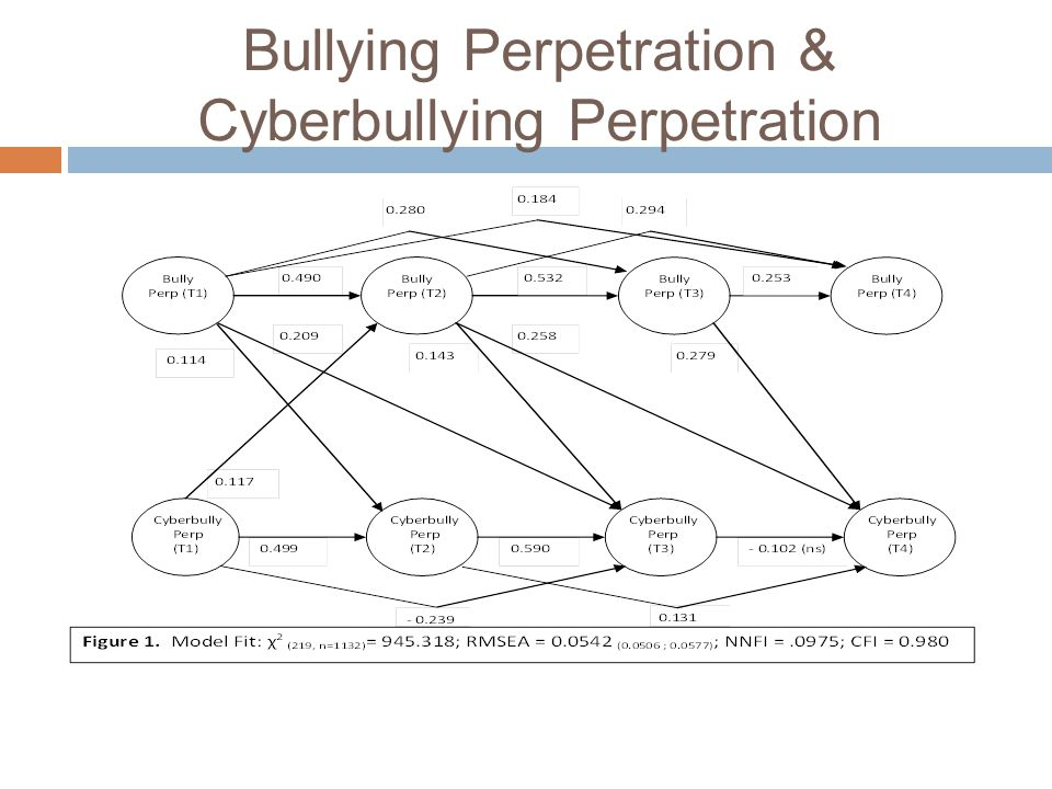 Bullying Perpetration & Cyberbullying Perpetration
