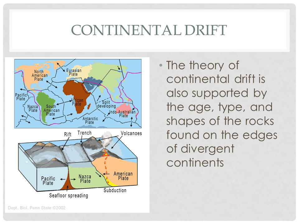 CONTINENTAL DRIFT The theory of continental drift is also supported by the age, type, and shapes of the rocks found on the edges of divergent continents