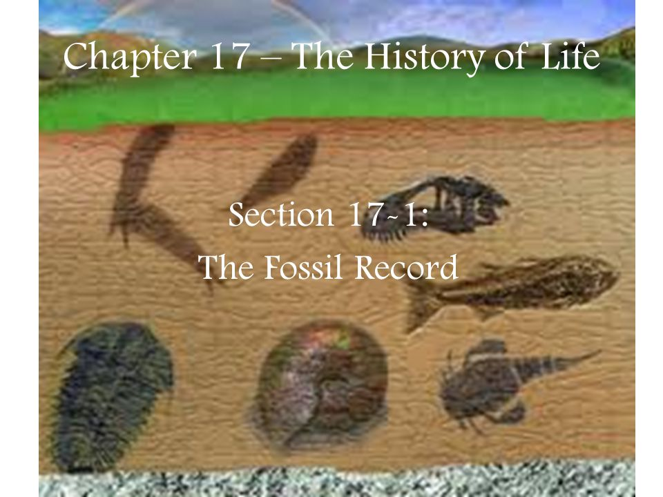 Chapter 17 – The History of Life Section 17-1: The Fossil Record