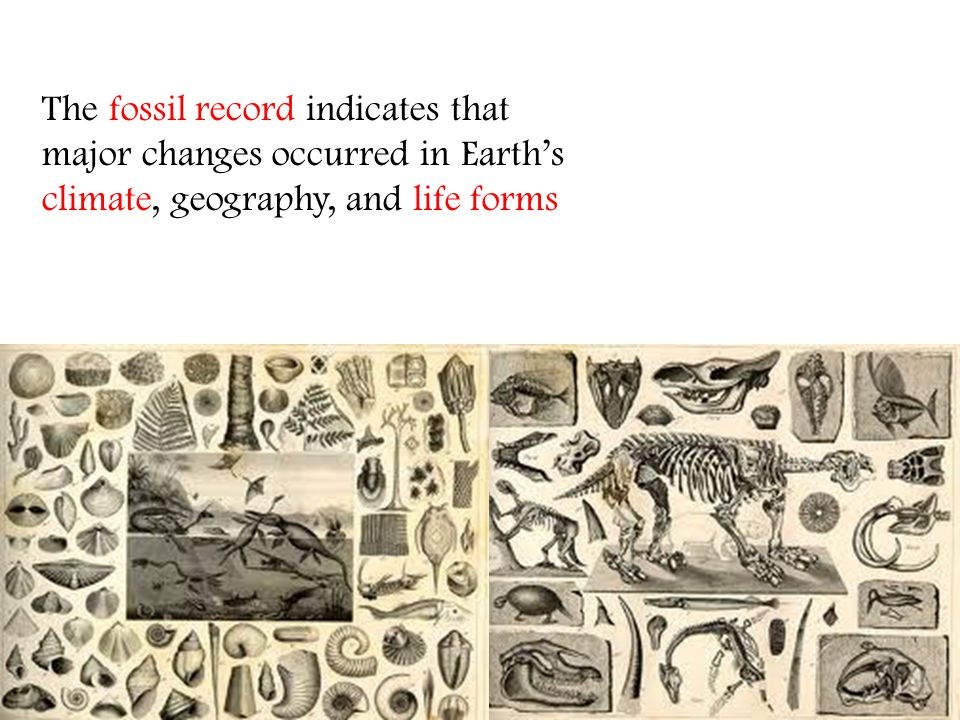The fossil record indicates that major changes occurred in Earths climate, geography, and life forms