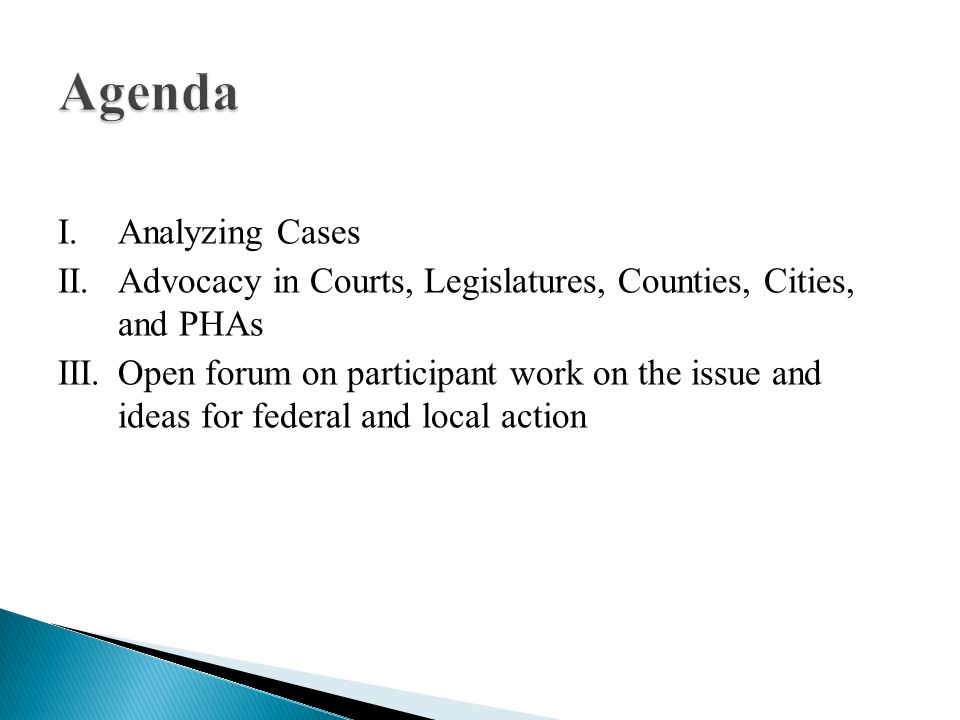 I.Analyzing Cases II.Advocacy in Courts, Legislatures, Counties, Cities, and PHAs III.Open forum on participant work on the issue and ideas for federal and local action