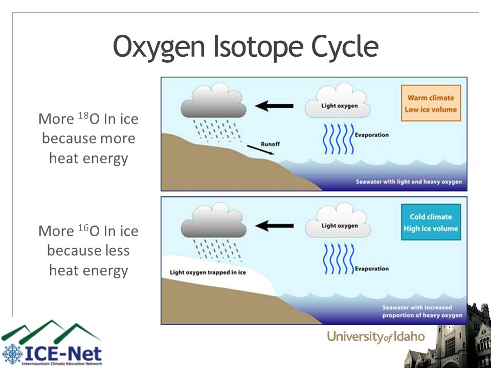 Oxygen Isotope Cycle More 18 O In ice because more heat energy More 16 O In ice because less heat energy