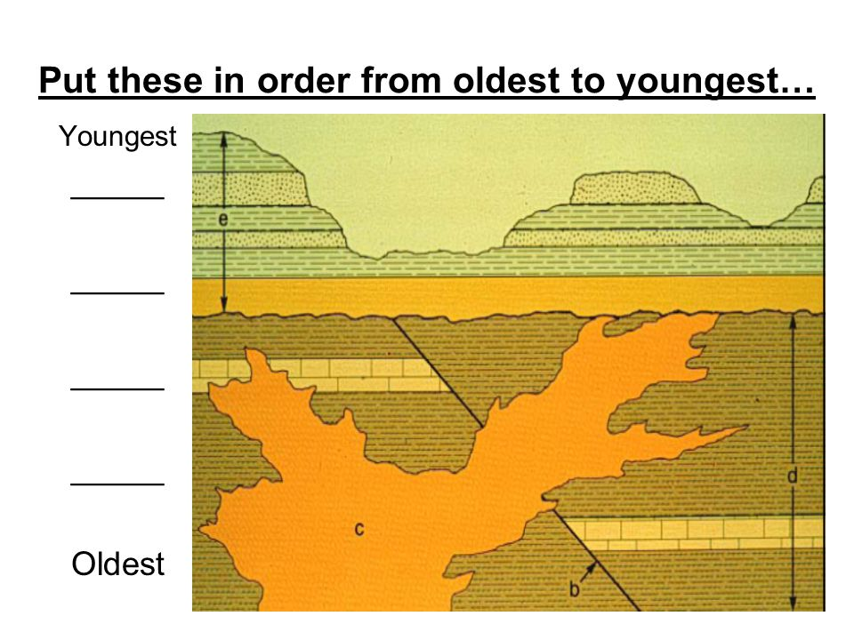 Put these in order from oldest to youngest… Youngest _____ Oldest
