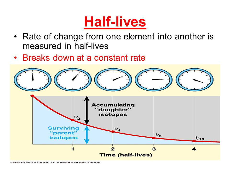 Half-lives Rate of change from one element into another is measured in half-lives Breaks down at a constant rate