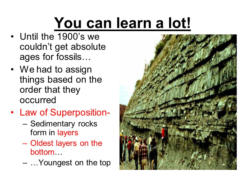 You can learn a lot! Until the 1900s we couldnt get absolute ages for fossils… We had to assign things based on the order that they occurred Law of Su