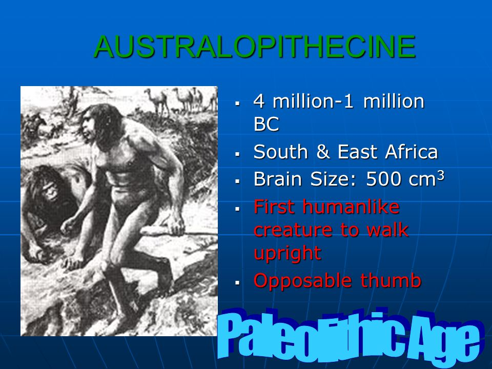 The Neolithic Revolution Early man lived in groups of 2 to 3 dozen people.