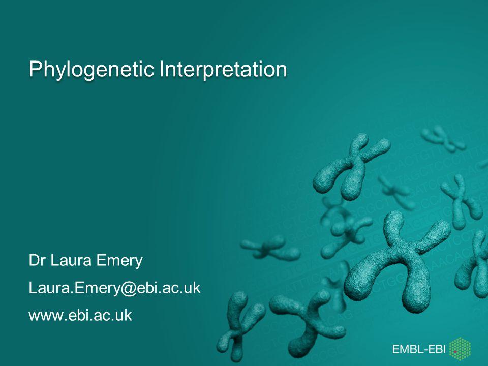 Phylogenetic Interpretation Dr Laura Emery Laura.Emery@ebi.ac.uk www.ebi.ac.uk