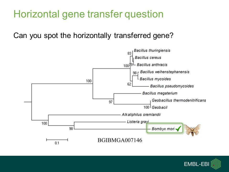 Horizontal gene transfer question Can you spot the horizontally transferred gene?