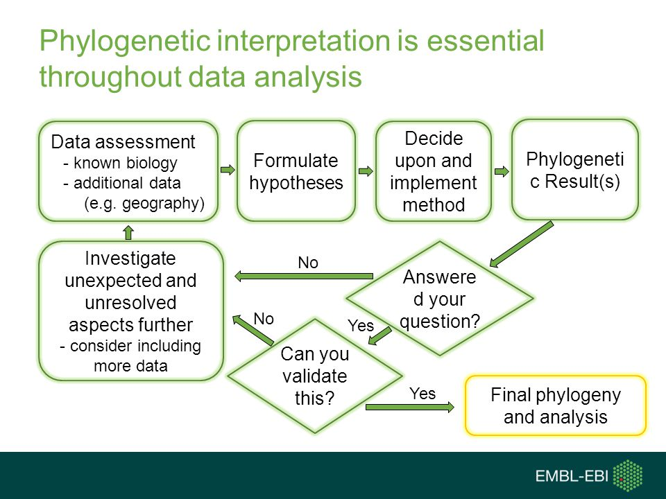 Phylogenetic interpretation is essential throughout data analysis Data assessment - known biology - additional data (e.g. geography) Decide upon and i