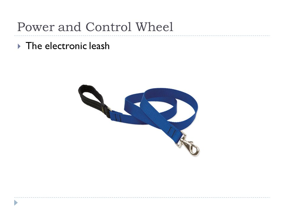 Power and Control Wheel The electronic leash