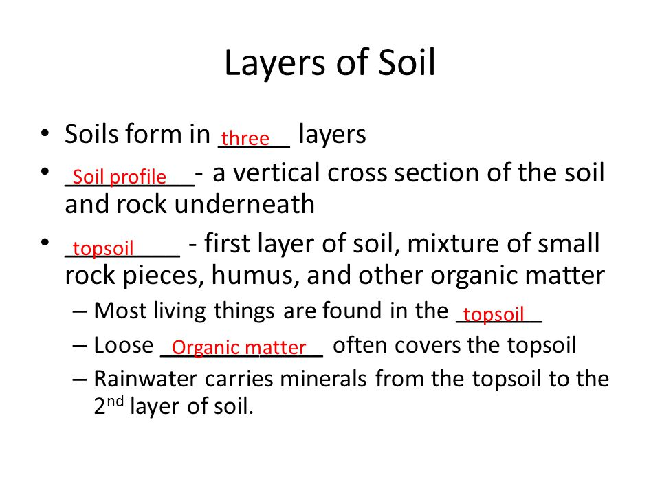 Layers of Soil Soils form in _____ layers _________- a vertical cross section of the soil and rock underneath ________ - first layer of soil, mixture