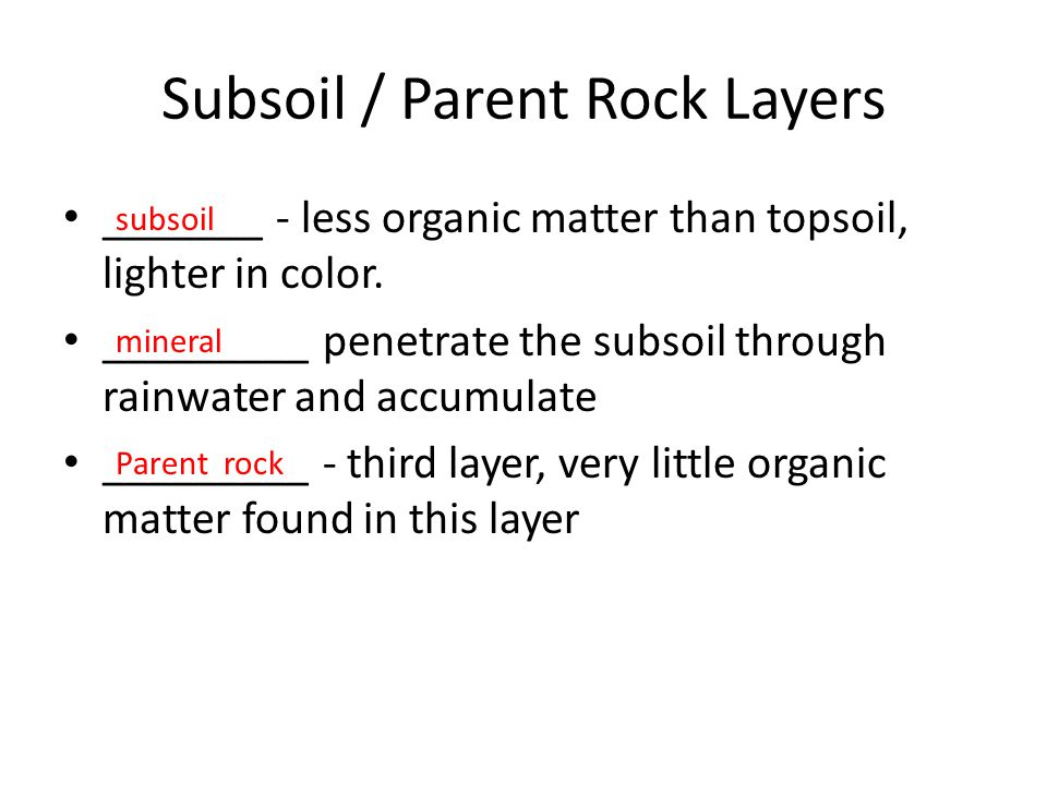 Subsoil / Parent Rock Layers _______ - less organic matter than topsoil, lighter in color. _________ penetrate the subsoil through rainwater and accum