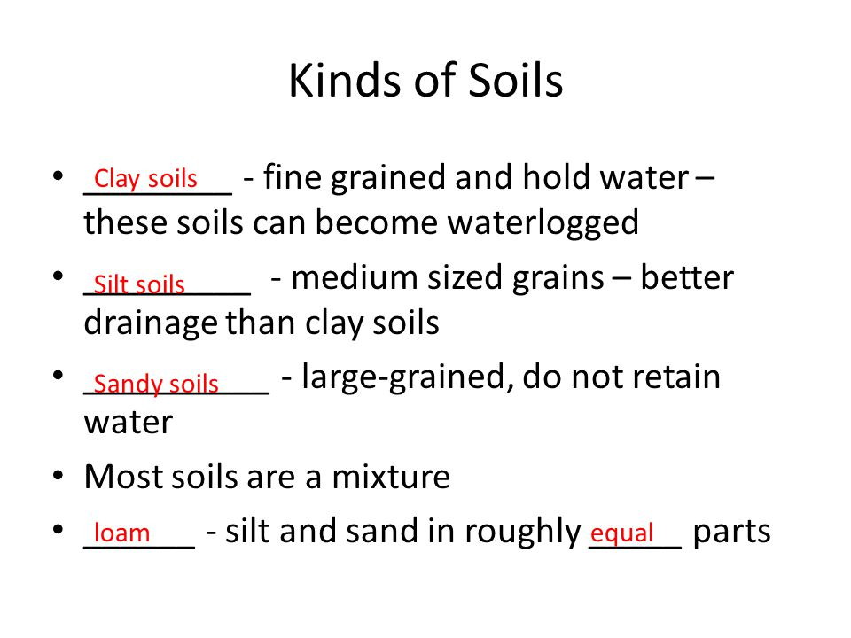 Kinds of Soils ________ - fine grained and hold water – these soils can become waterlogged _________ - medium sized grains – better drainage than clay