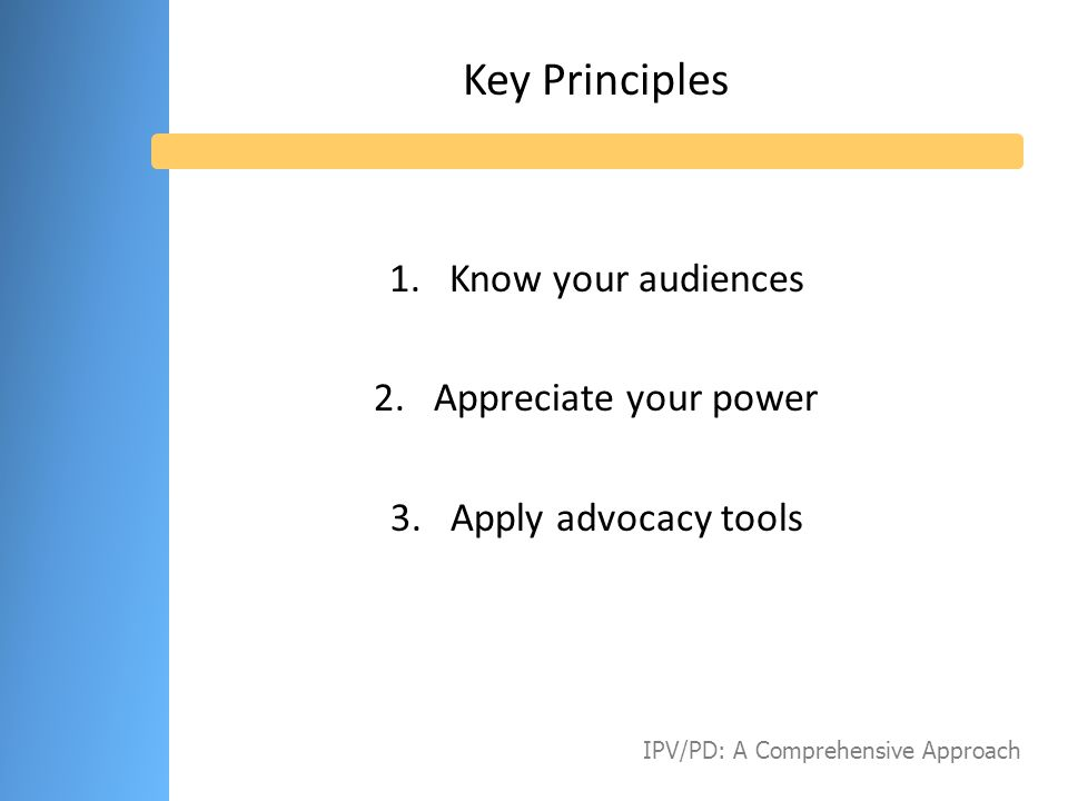 Audience Elected and Appointed Officials Community Leaders Business Leaders Thought Leaders IPV/PD: A Comprehensive Approach