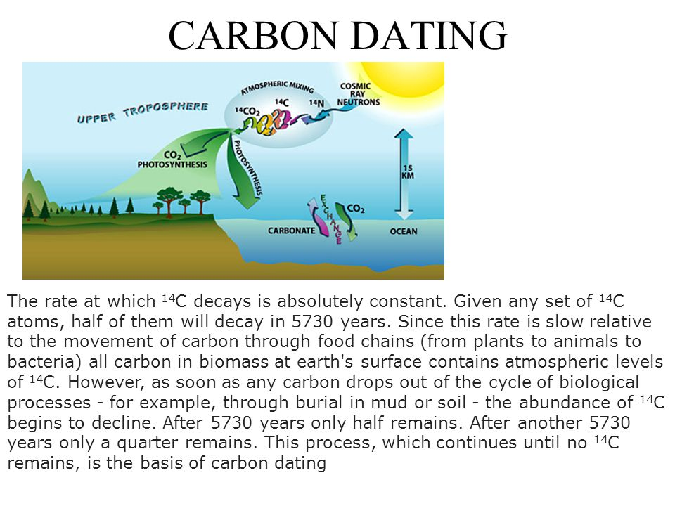 CARBON DATING The rate at which 14 C decays is absolutely constant.