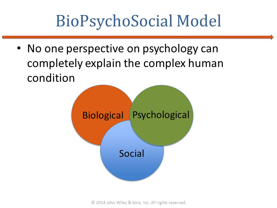 No one perspective on psychology can completely explain the complex human condition BioPsychoSocial Model © 2014 John Wiley & Sons, Inc. All rights re