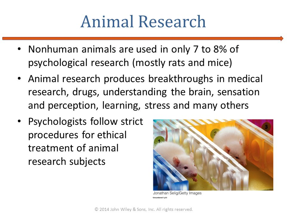 Nonhuman animals are used in only 7 to 8% of psychological research (mostly rats and mice) Animal research produces breakthroughs in medical research,