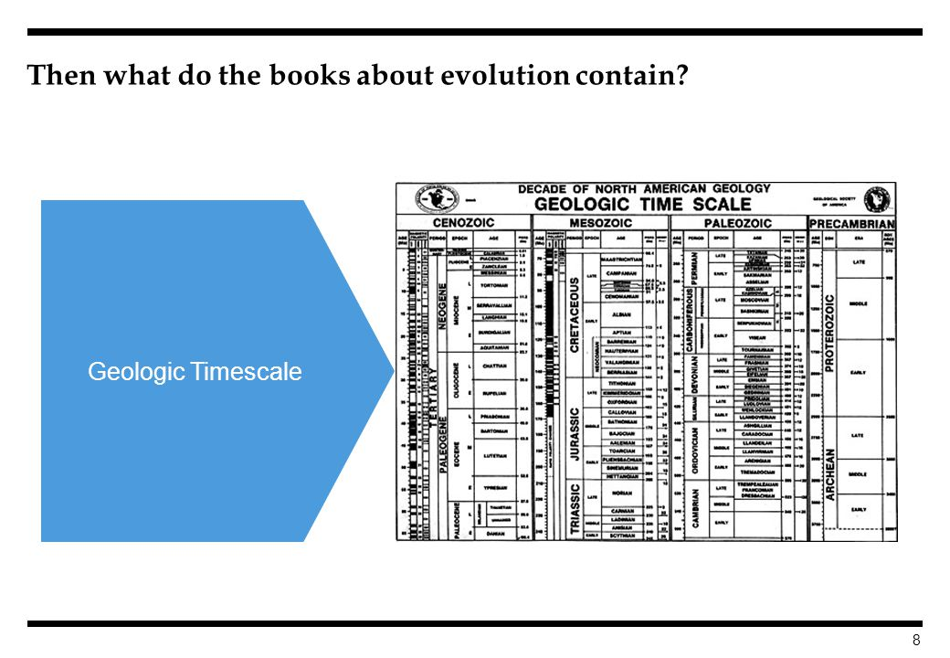 8 Then what do the books about evolution contain Geologic Timescale