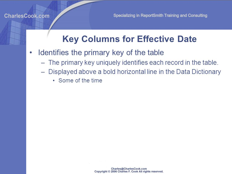 Identifies the primary key of the table –The primary key uniquely identifies each record in the table. –Displayed above a bold horizontal line in the