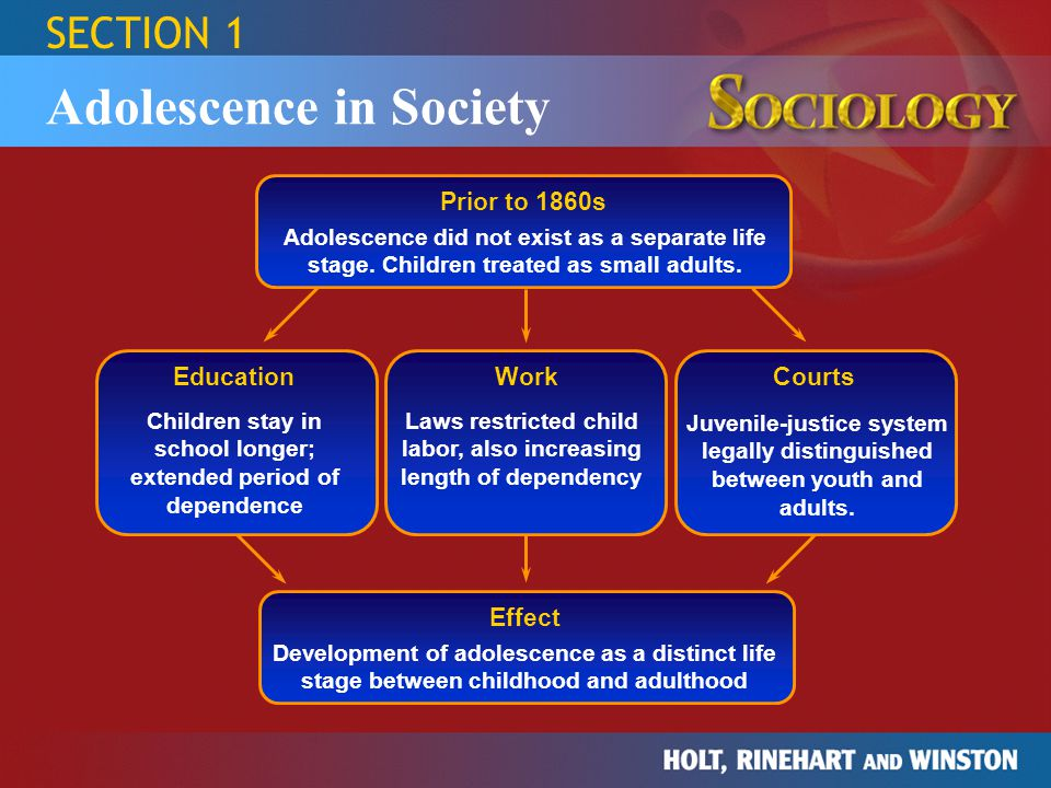SECTION 1 Adolescence in Society Prior to 1860s Adolescence did not exist as a separate life stage. Children treated as small adults. Education Courts