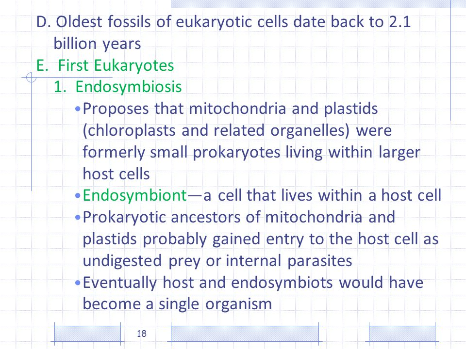 D. Oldest fossils of eukaryotic cells date back to 2.1 billion years E. First Eukaryotes 1. Endosymbiosis Proposes that mitochondria and plastids (chl